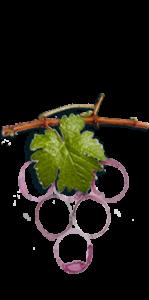 lamonarca-vinicola-icona-azienda-01